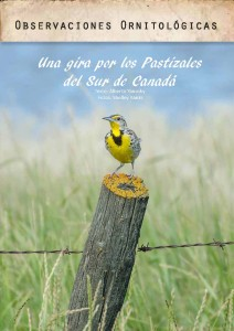 A Saskatchewan Meadowlark - in Paraguay's Urutau magazine.