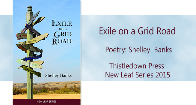 New Poetry Collection: <br /> Exile on a Grid Road