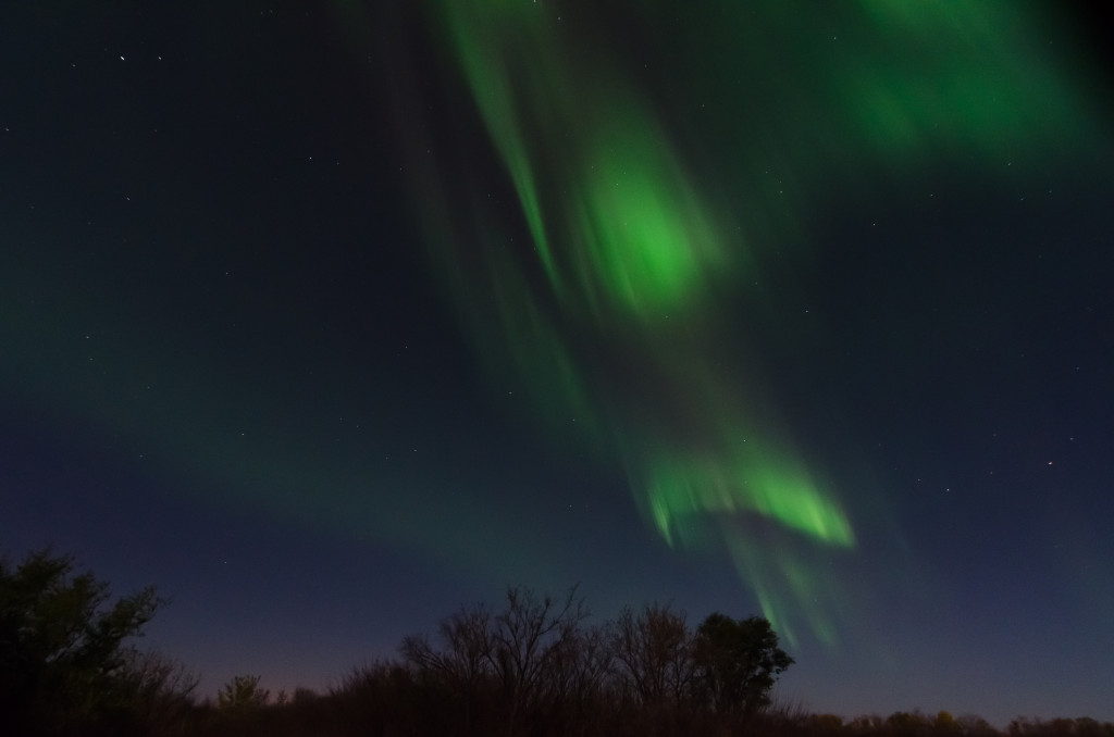 Aurora Borealis, Condie Nature Reserve, SK